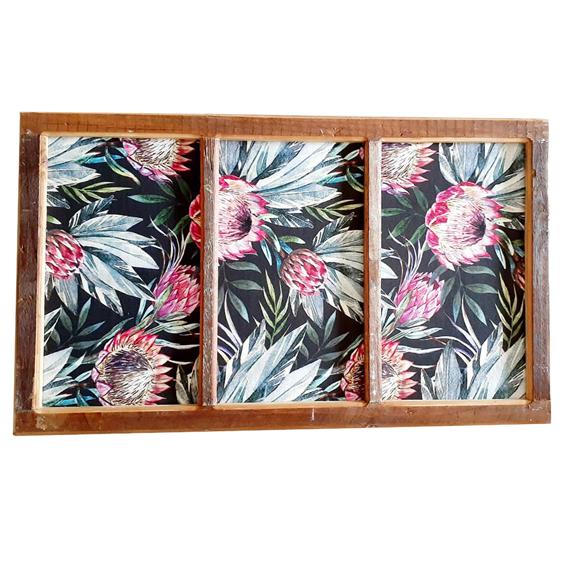 Protea Pinboard